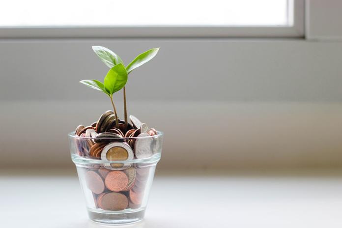 ahorro vaso con dinero y plantas