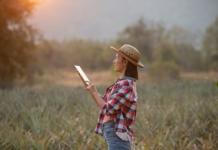mujer con ipad en un campo de trigo