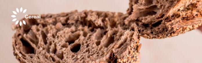 concurso de pan por cereal bakery
