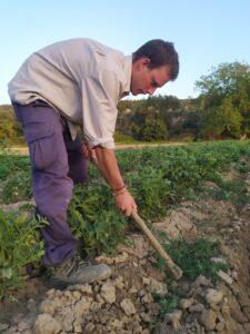 agricultor arando la tierra