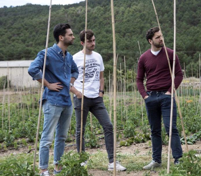 Foto Equipo harbest market sobre cultivo